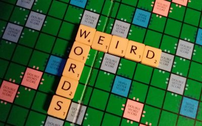 Weird Words of the Week #1 – 4